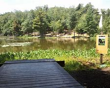 Image result for maple hill disc golf