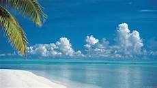 48 tropical island wallpaper screensavers wallpapersafari