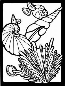 Muschel Ausmalbilder Malvorlagen Verschiedene Muscheln Ausmalbild Malvorlage Tiere