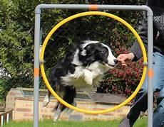 comment fabriquer une re pour chien fabriquer accessoires d agility