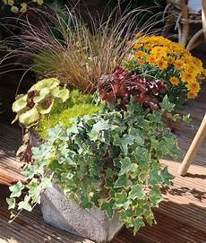 Herbstbepflanzung F 252 R T 246 Pfe Und K 252 Bel Herbst