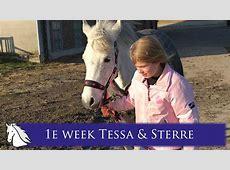 De 1e week Tessa & Sterre * Hart voor Paarden *   YouTube