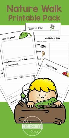 nature worksheet for kindergarten 15159 free nature walk worksheet