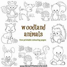 baby forest animals coloring pages 17512 woodland animal colouring pages