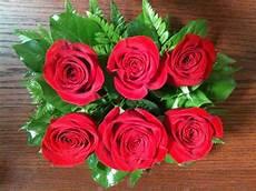 20 Gambar Foto Bunga Mawar Merah Ayeey