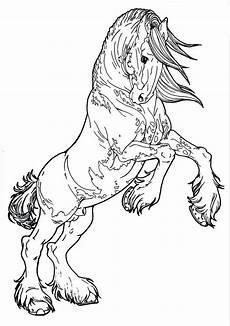 Pferde Malvorlagen Gratis Coloring Pages That Look Real Codeadventures Co In