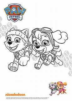 Kinder Malvorlagen Paw Patrol Kostenlose Malvorlage Paw Patrol Coloring And Malvorlagan