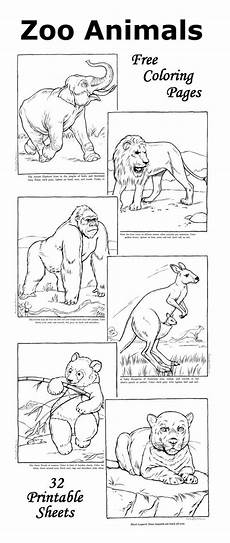 zoo animals coloring pages for kindergarten 17052 zoo coloring pages facts with each zoo animal picture zoo animal coloring pages zoo