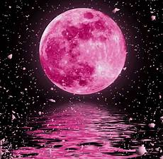 pink moon wallpaper the flower moon does may 2017 s moon