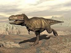 Malvorlagen Dinosaurier T Rex Run T Rex Couldn T Actually Run According To This Study