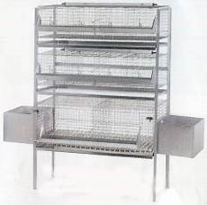 gabbia per conigli usata gabbia per conigli ingrasso e fattrici 63qrp tabec