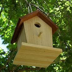 Cabane 224 Oiseaux En Bois Ernest Turc