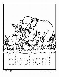 zoo animals coloring sheets 17463 1000 images about zoo printables coloring pages clip arts on jungle animals