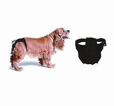 arredare casa in cagna sanitari per cani s m l femmina in calore
