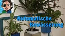 zimmerpflanzen im urlaub bewässern nie wieder blumen gie 223 en automatische bew 228 sserung selber