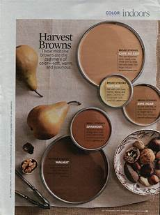 love me some brown brown brown home decor pinterest paint colors warm browns and