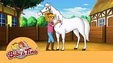 bibi tina der pferdefl 252 sterer