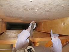 Schimmel Am Dachstuhl Ursachen Und Richtige Sanierung