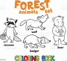 forest animals coloring book stock illustration