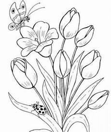 1001 Keindahan Sketsa Gambar Bunga Terlengkap Dan Cara
