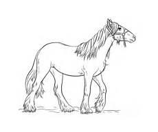 Ausmalbilder Pferde Hannoveraner Ausmalbilder Pferde Malvorlagen Kostenlos Zum Ausdrucken