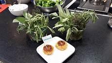 marquardt küchen essen gesundheitstag in essen marquardt k 252 chen