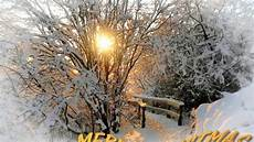 merry christmas nature pictures merry christmas yellow winter sun nature