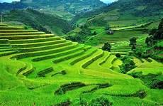 terrace step farming inca advantages and disadvantages