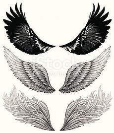 pencil and marker drawings of wings hi res jpeg included