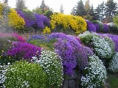 piante fiorite perenni aiuole fiorite perenni ecco come progettarle villegiardini
