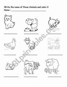 domestic animal worksheets 14291 domestic animal esl worksheet by bivhu