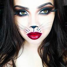a diy idea make up for cats lifestyle trends tips