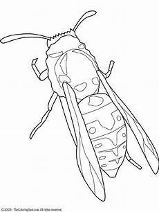 yellow jacket coloring page audio stories for