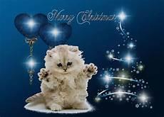 t 233 l 233 charger fonds d 233 cran souhaiter joyeux no 235 l avec un chat gratuitement
