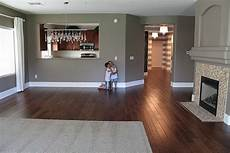love this wall color with the dark wood floors for the