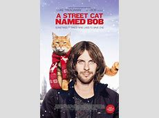 Street Cat Named Bob,Street Cat Bob is moving on, but he's leaving us with a,James bowen and bob the cat update|2020-06-19