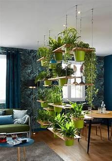 Neat Idea For A Separator In 2019 Decor Indoor Garden