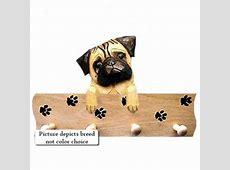 Affenpinscher Pawprint Hang Up MAPLE @ Pet supplies online