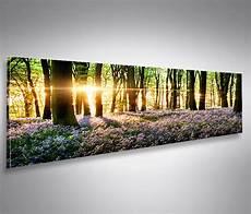 5 Teiliges Bild Auf Leinwand - bild auf leinwand lavendel im wald panorama poster
