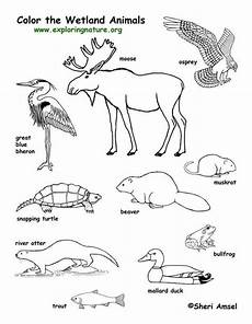 free coloring pages pond animals 17411 excellent resource for biology school stuff coloring student centered resources