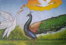 animale vanitoso peacock and the crane story moral stories for children
