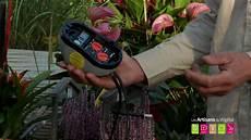 comment arroser ses plantes pendant les vacances comment arroser ses plantes potager ses jardini 232 res
