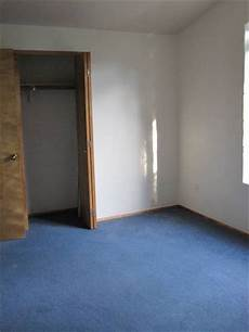 light blue carpet what color walls loris decoration
