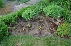 3 jardins au qu 233 bec des plates bandes comestibles et