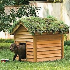 dog house with roof diy green roof dog veranda your projects obn