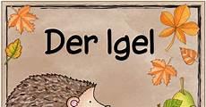 Malvorlagen Igel Herbst Pdf Themenplakat Igel Pdf Plakat Thema Basteln Herbst