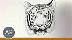 Tier Illustrationen Tiere Zeichnen Lernen Tiger Zeichnen