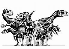 ausmalbilder dinosaurier skelett dinosaurier