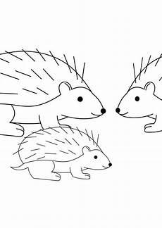 hedgehog family coloring pages bulk color