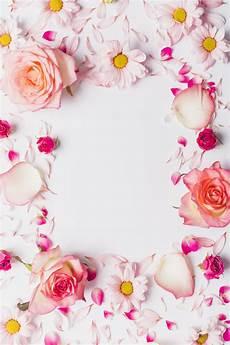 design fiori cornice da fiori e petali scaricare foto gratis